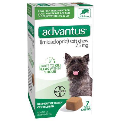 7 Count Advantus Soft Chew Flea Treatment for Small Dogs 4-22 lbs