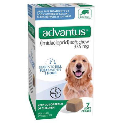7 Count Advantus Soft Chew Large Dogs Flea Treatment 23-110 lbs