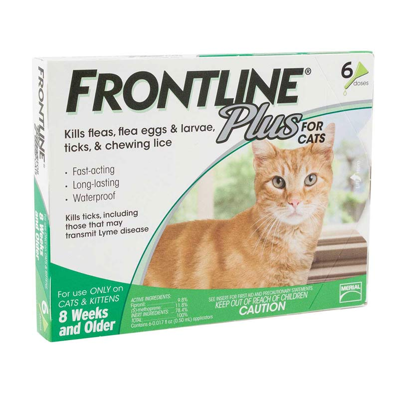 6 Pack of Frontline Plus Green Flea Treatment for Cats 8 Weeks & Older and Over 1.5 lbs at Ryan's Pet Supplies