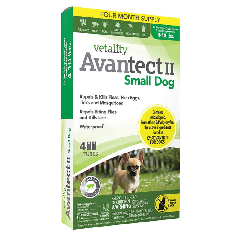 4 months Vetality Avantect II for Dogs 4-10 lbs