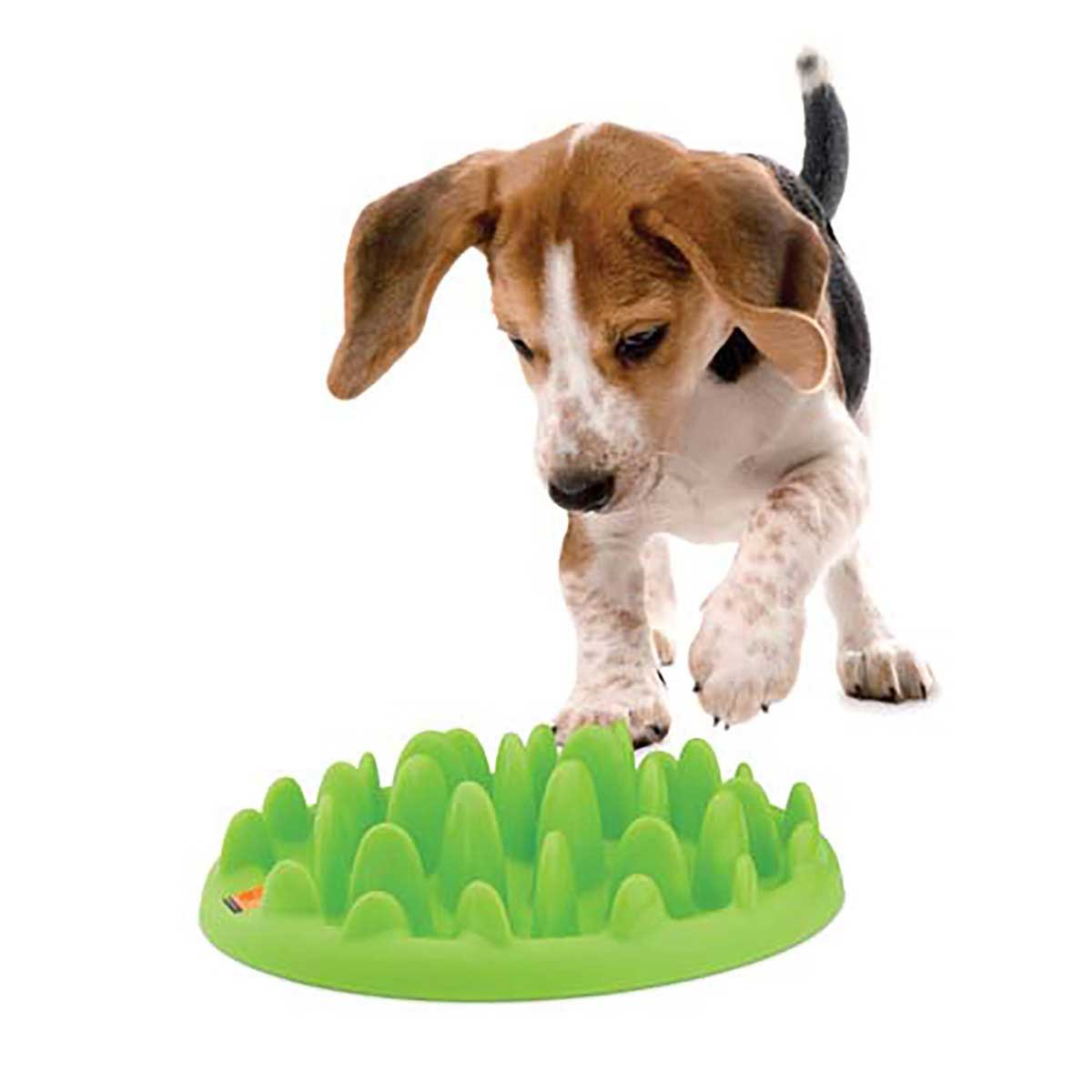 Green Mini Slow Feeder for Small Dogs
