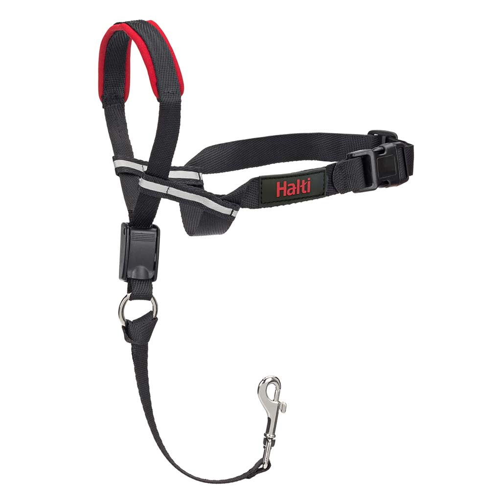 View of Halti Optifit Medium Head Training Collar Clasp
