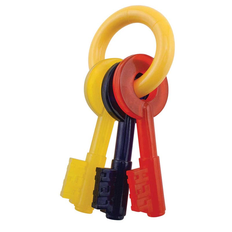 Nylabone Large Key Ring and Teething Keys for Larger Puppies