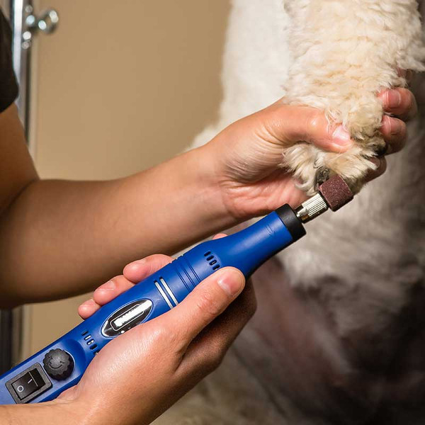 Groomer using Wahl Ultimate Nail Grinder on Dog